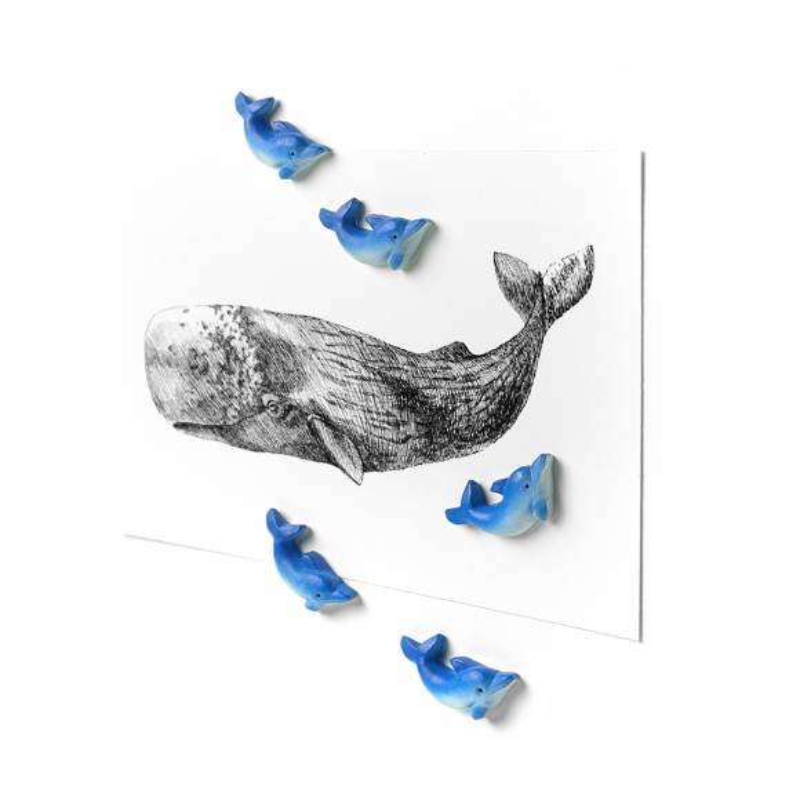 Aimants Dolphin