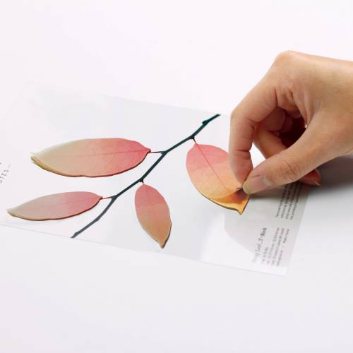 Sticky Leaf Tracing birch - Notes collantes