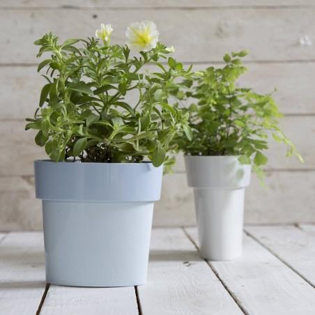 Slim Pot - Pot de fleur oval avec soucoupe intégrée