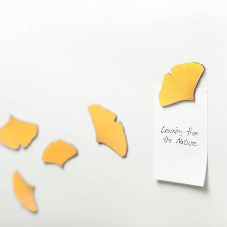 Leaf Magnet Ginkgo