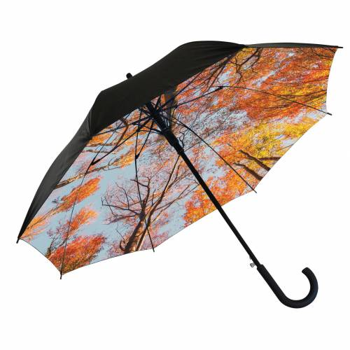 Forest umbrella